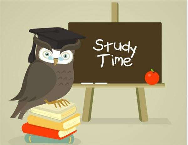 Supervised Study over Christmas Holidays