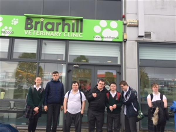 Visit to Briar Hill Veterinary Practice