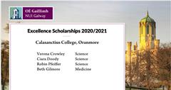 N.U.I.G. Excellence Scholarships